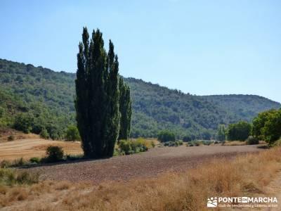 Valle del Río Ungría; equipamiento para hacer senderismo excursiones turismo; las excursiones abri